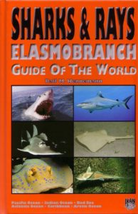 Sharks and Rays Elasmobranch Guide Hennemann