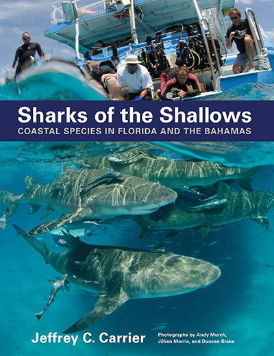 Sharks of the Shallows Book