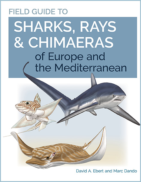 Sharks, Rays, and Chimaeras of Europe and the Mediterranean
